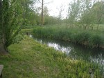 Highlight for Album: Loddon Brook 18 05 2010