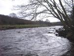 TYNE river
