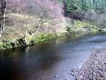 TYNE river3